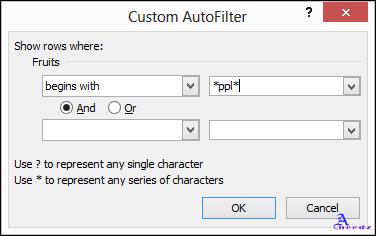 Customs Autofilter